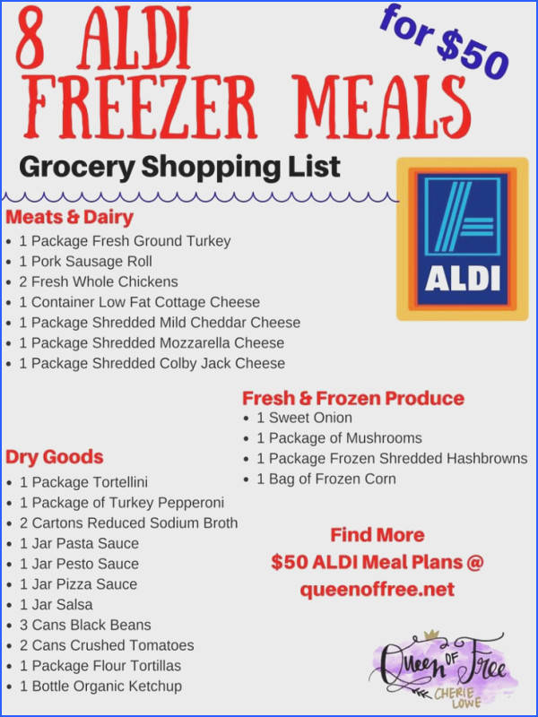 I can t believe you can make 8 ALDI Freezer meals for under $50