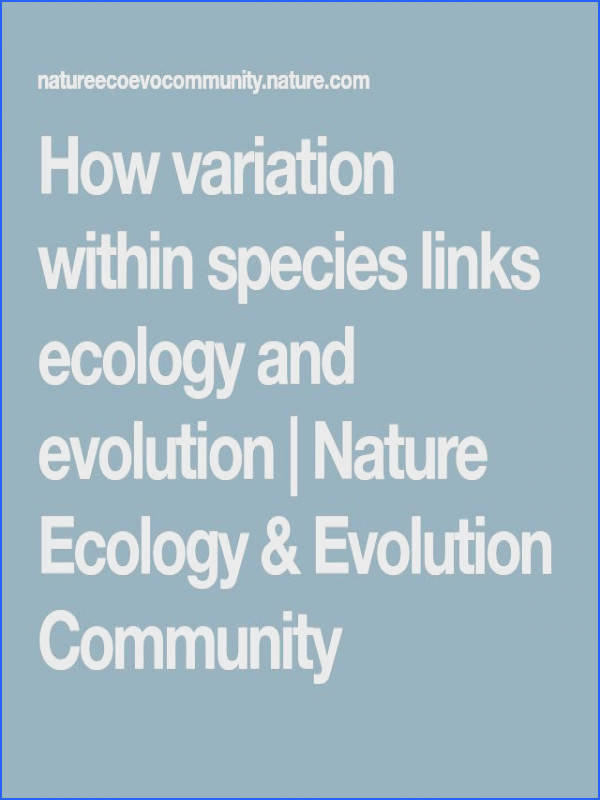 How variation within species links ecology and evolution