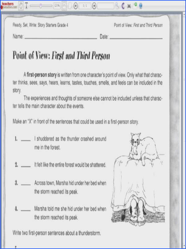 Point of View First and Third Person Worksheet