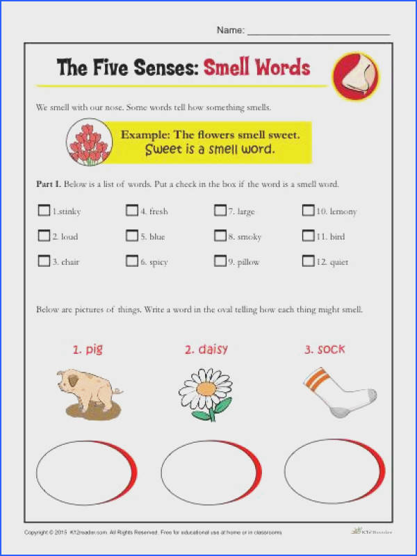 The Five Senses Printable Worksheet Activity for Kindergarten and First Grade Smell Words