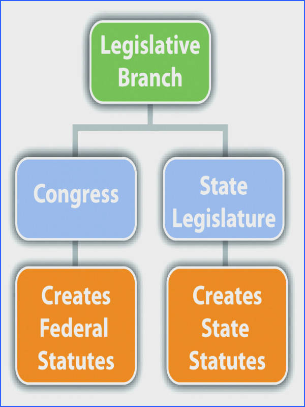 Examples of Legislative Branch Checks and Balances