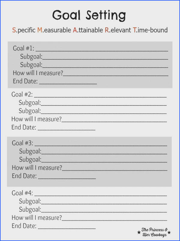 Goal Setting Free Printable l The Princess & Her Cowboys