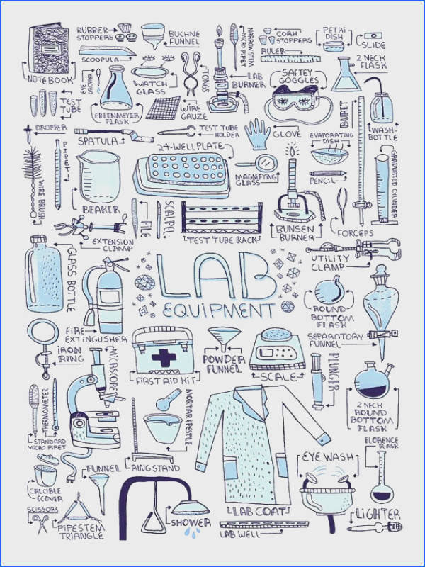 LAB EQUIPMENT art print by Rachelignotofsky on Etsy $29 00