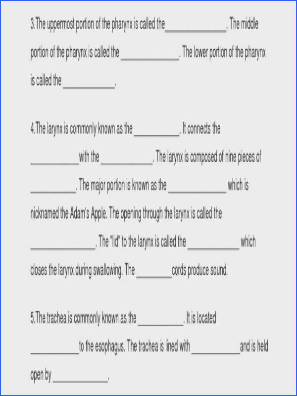 "Ideal Gas Law Worksheet Lovely Gas Law Worksheet & """"sc"" 1""st"