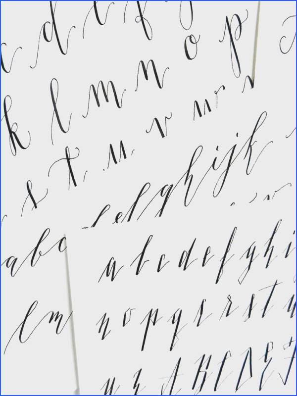 Premium Calligraphy Worksheet Add Kaitlin Style Variations