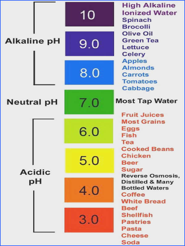 Low pH and Cancer The relationship between cancer and pH Cancer thrives in an