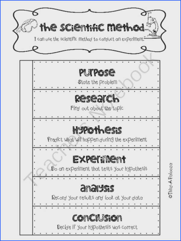 Freebie Interactive Notebook foldable Scientific Method for ANY experiment from Third A