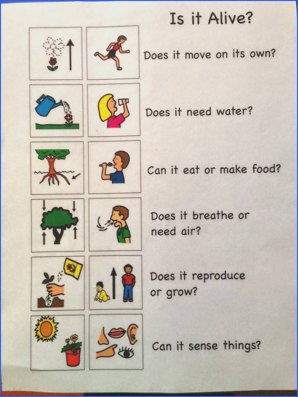 This chart could be used as a reference when doing an activity about living and non living things The students could refer back to this chart to make sure