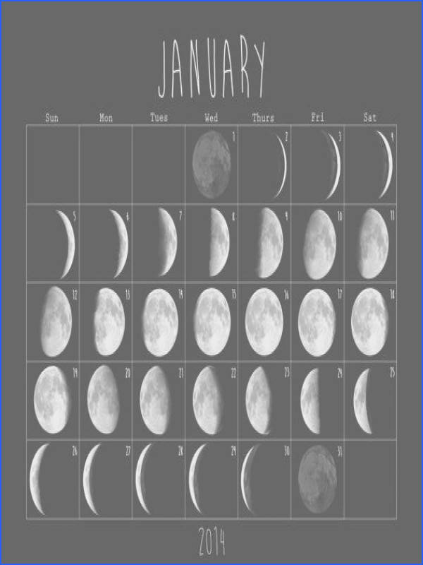 Moon Cycle Calendar Book 2014 Moon Phase Soft Cover Slim