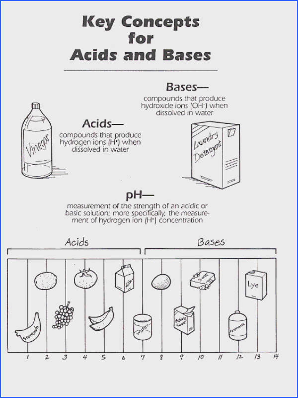 acids and bases worksheet acids and bases worksheet answers free worksheets library with acidbase ms beaucage