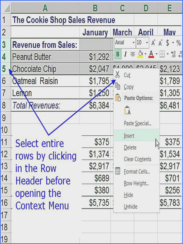 Add Rows To an Excel Worksheet