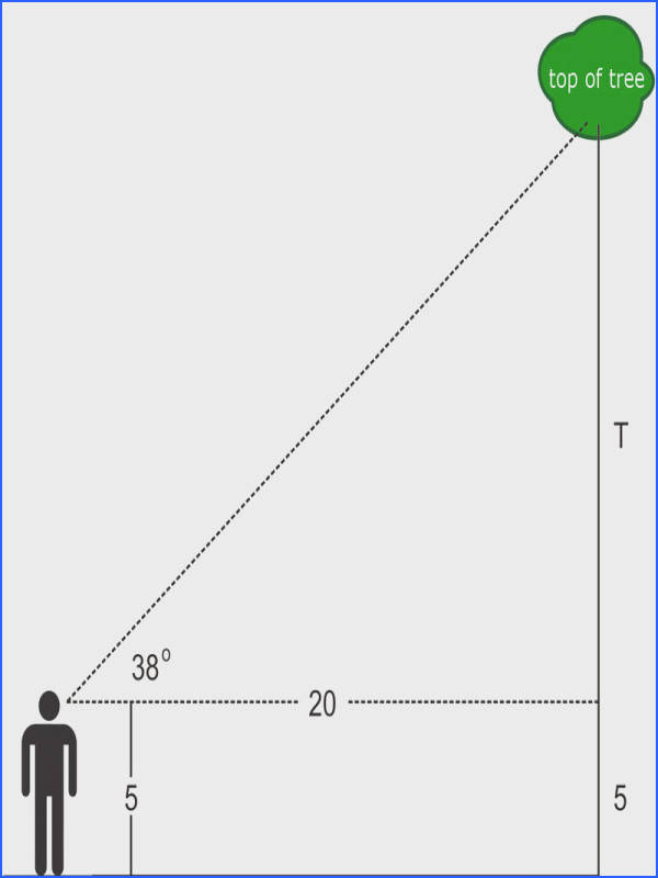 The solution depends on your height as you measure the angle of elevation from your line of sight Assume that you are 5 feet tall