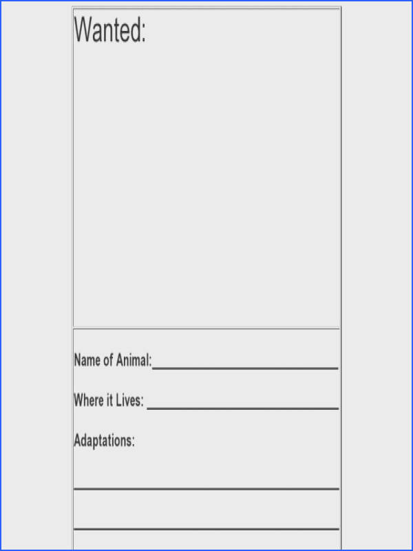 Wanted Poster Animal Adaptations Worksheet for 3rd 4th Grade