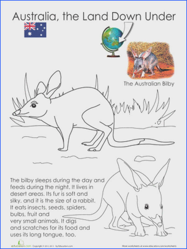 Animals of Australia Coloring Pages