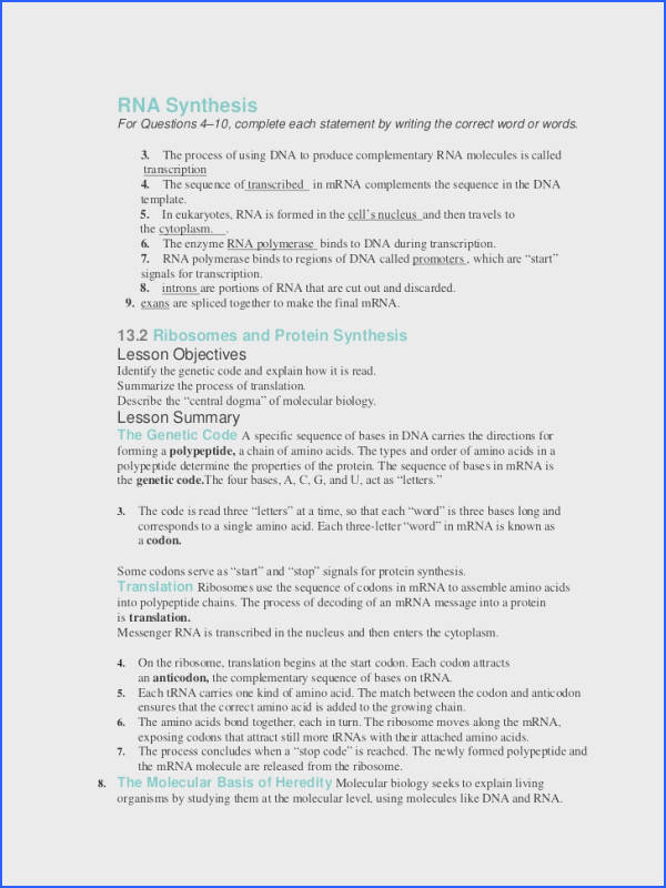 DNA Structure and Replication Class Notes With Answers Biology