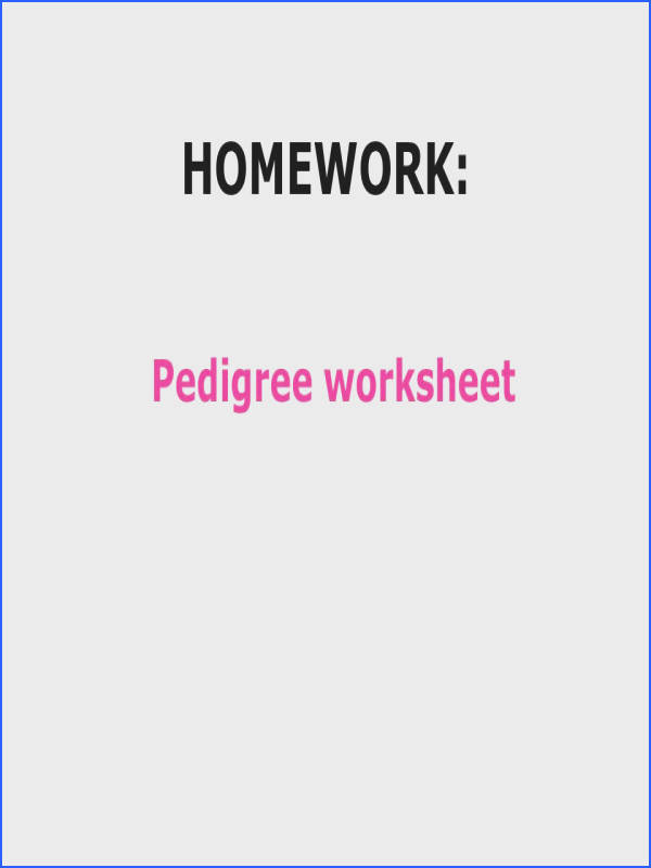 28 HOMEWORK Pedigree worksheet