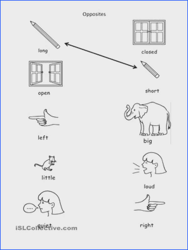 Opposites worksheet Free ESL printable worksheets made by teachers