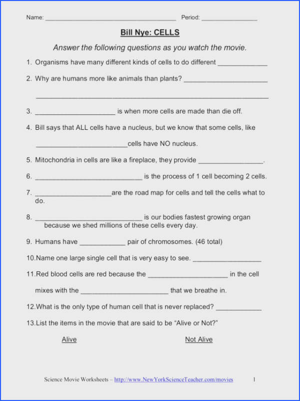 Bill Nye The Science Guy Cells Worksheet Worksheets for all Download and Worksheets