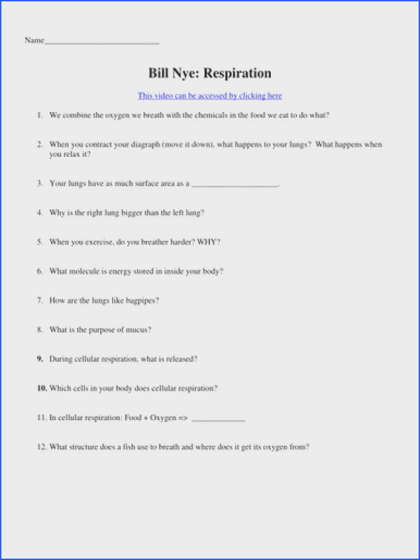 Bill Nye Video Worksheets Four Biology Cells And T