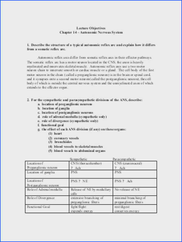 Biology 201 Worksheet On Autonomic Nervous System Answers Image Below Nervous System Worksheet Answers