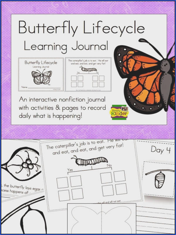 Butterfly Science Journals Great to do with your kindergarten classes Just add nonfiction books