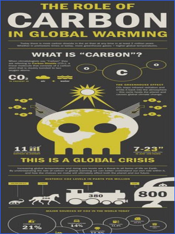 Role of Carbon Global Warming Infographic