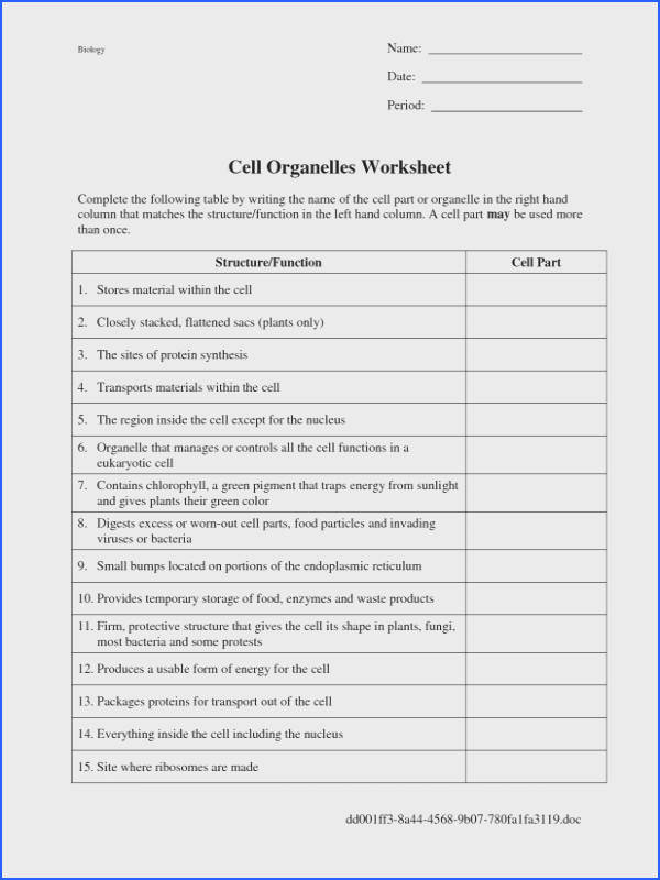 Cell And Organelles Worksheet Worksheets for all Download and Worksheets