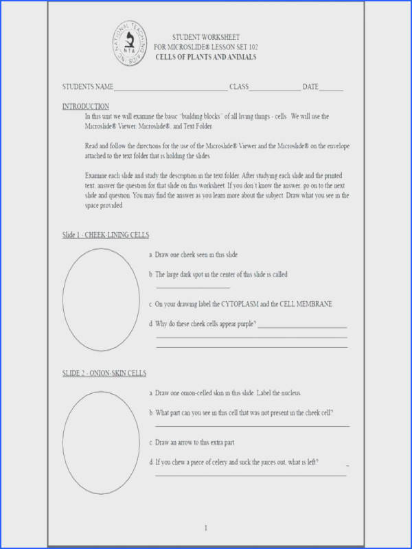 Cell Membrane Coloring Worksheet Answer Key synthesis Coloring Activity Works on Human Cell Co Uk