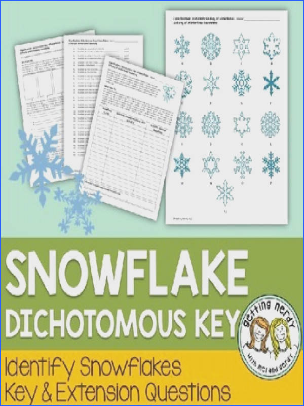 Christmas Science a Winter Snowflake Dichotomous Key Holiday Taxonomy