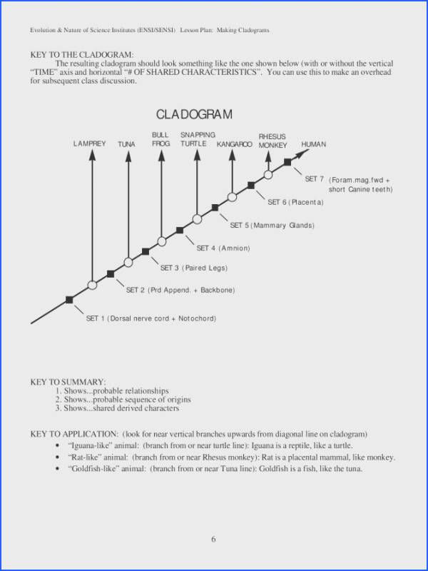 Cladogram Worksheet Best Cladogram Analysis Document Template