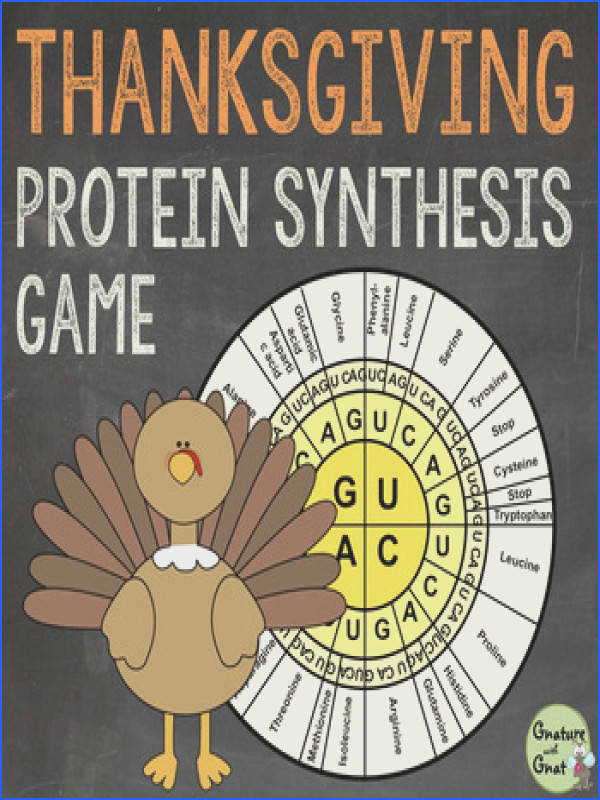 Thanksgiving DNA RNA & Protein Synthesis Game Activities