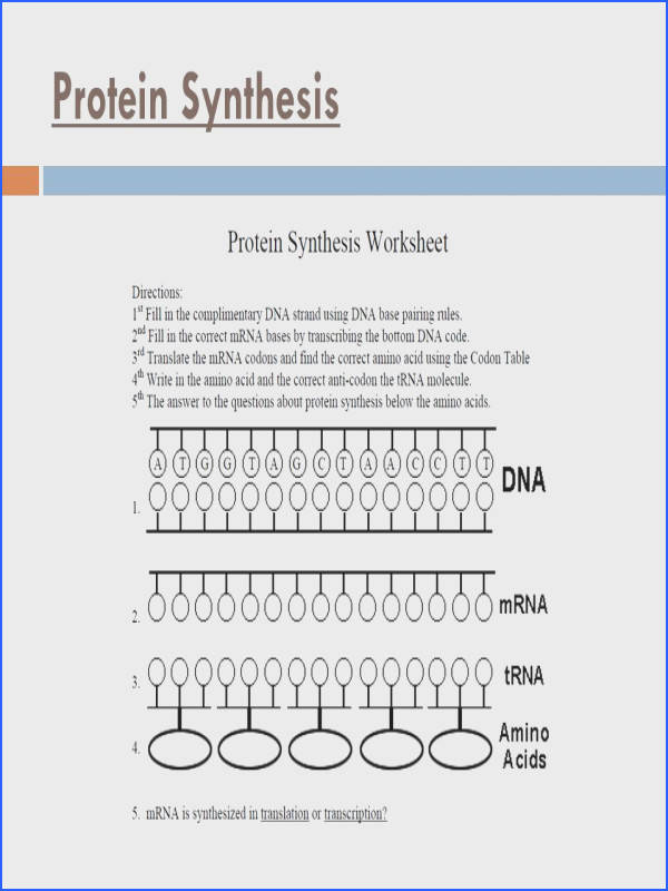 20 Another Codon Chart You May See