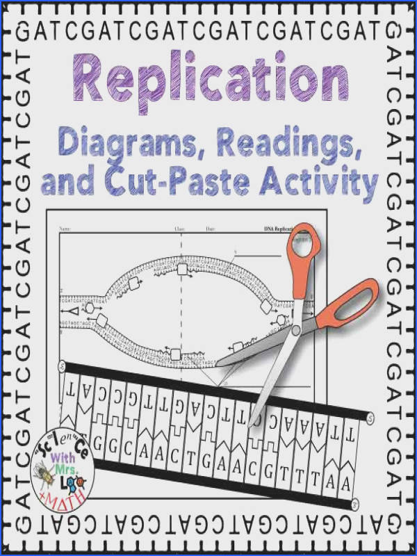 DNA Replication Activity Diagram and Reading for High School Biology