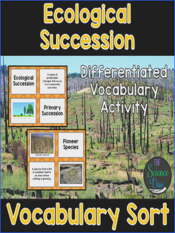 Ecological Succession Vocabulary Sort Ecological Succession Vocabulary Sort
