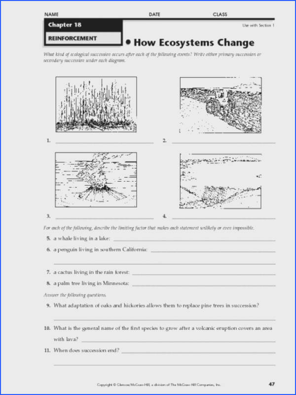 What Is An Ecosystem Worksheet Answers Worksheets for all Download and Worksheets