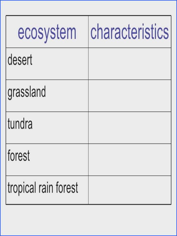 """""sc"" 1""st"" ""Have Fun Teaching image number 77 of ecosystem worksheet"