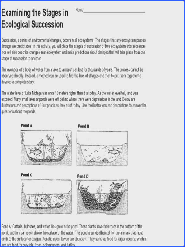 biomes worksheets ecosystems mensa for kids