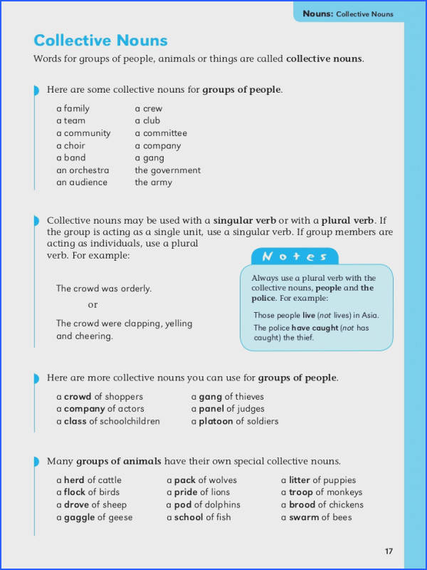 Transform English Grammar Worksheets For Grade 4 Nouns Basic English Grammar Book 2 Kids