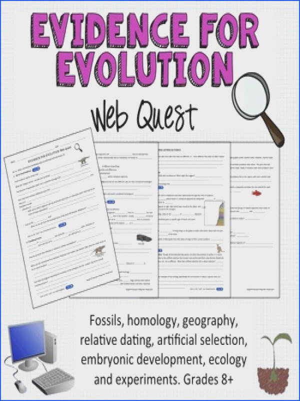 Evidence for Evolution Webquest Image Below Evidence for Evolution Worksheet