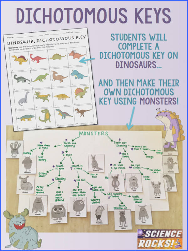 Your students will love this fun activity on dichotomous keys using dinosaurs and monsters
