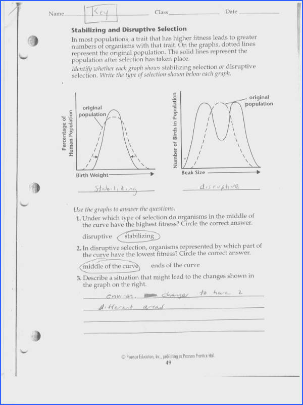 2 source natural selection evidence evolution worksheet answers