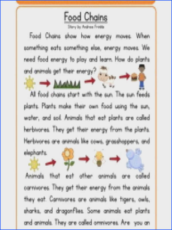 Food Chain Worksheet 4Th Grade