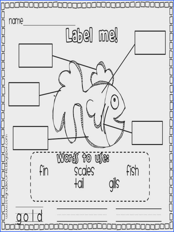 FREE 1st Grade Spelling Worksheets Closet of Free Samples