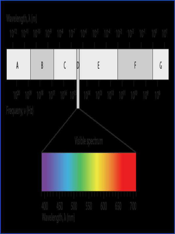FREE Electromagnetic Spectrum printable worksheet great for practice or assessment