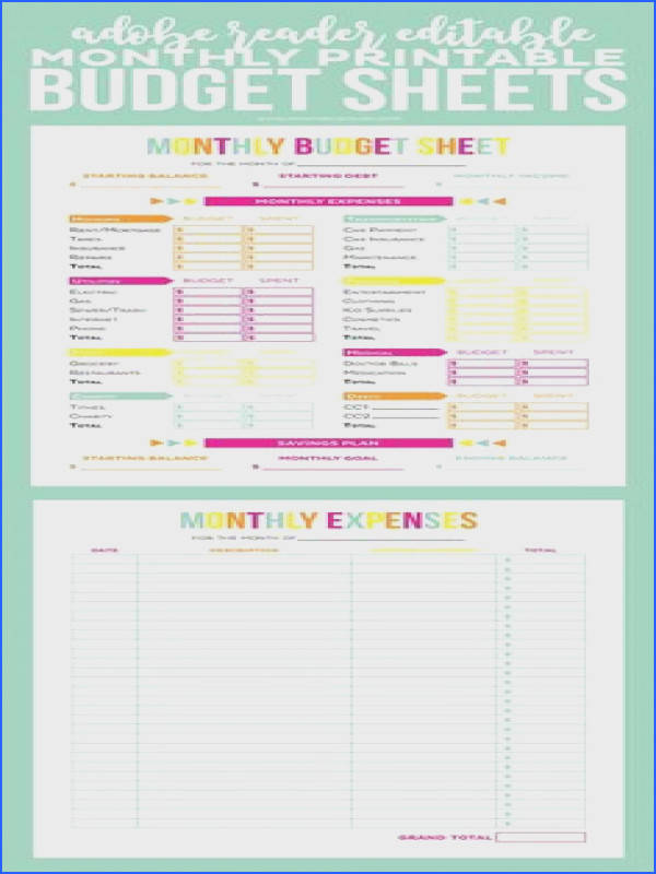 Get your finances in order with these Editable Printable Bud Sheets Includes monthly bud and