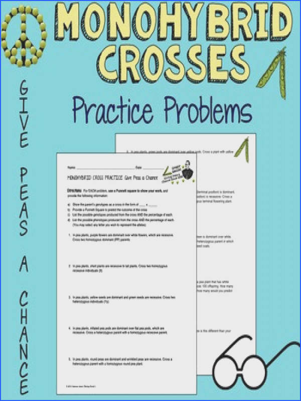 Genetics Practice Problems Worksheet New Monohybrid Cross Practice Give Peas A C Give Collection