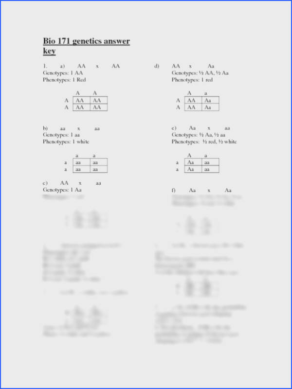 Chapter 10 Dihybrid Cross Worksheet Answer Key Mychaume Com