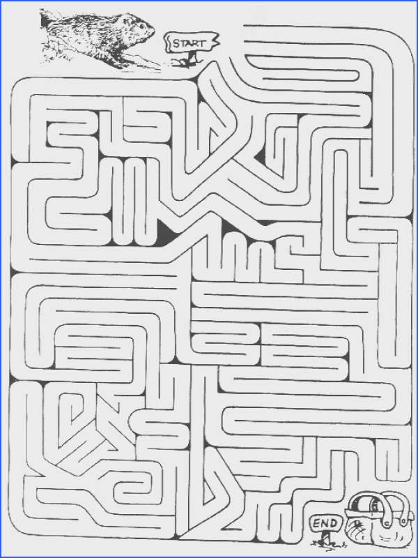 Groundhog Maze Pinned by Pediastaff – Please Visit Ht Image Below Maze Worksheets