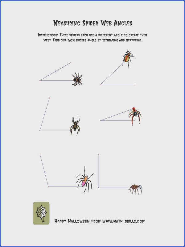 Halloween Math Worksheet Measuring Spider Web Angles