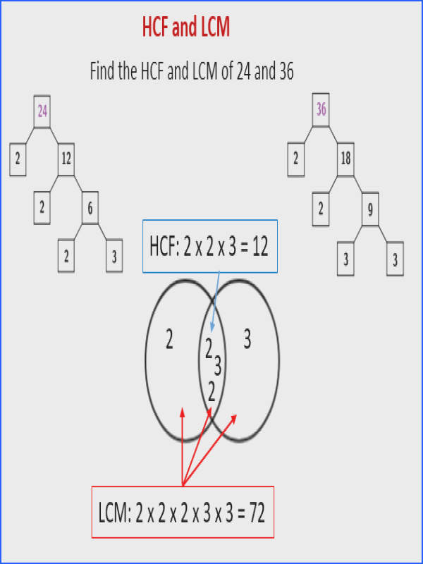 The following diagram shows how to find the HCF and LCM of 24 and 36 using Repeated Division